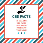 10 Amazing CBD Facts That Might Just BLOW Your Mind