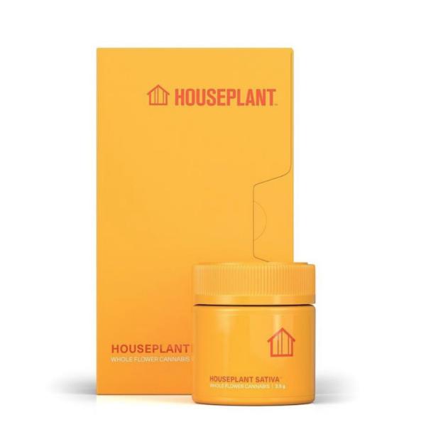 Seth Rogan Houseplant